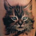Tatuaje Felino realista  color