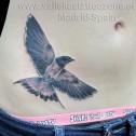 Tatuaje Golondrina