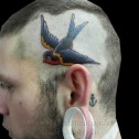 Tatuaje  Golondrina Oldschool