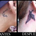 Tatuaje Cover Pluma