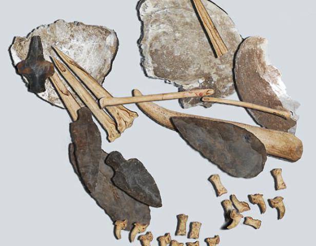 kit de tatuaje prehistorico